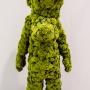 Kim Simonsson - Cauliflower Goofy